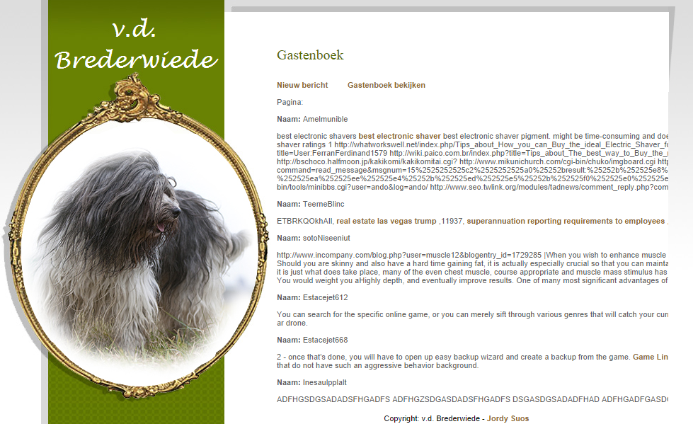 Spammed guestbook example